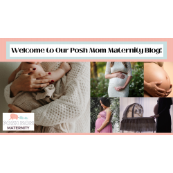 Welcome to Our Posh Mom Maternity Blog